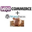 Crear una Tienda con Woocommerce