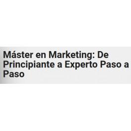 Máster en Marketing: De Principiante a Experto