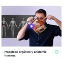 Modelado orgánico y anatomía humana