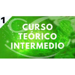 Curso Intermedio Teórico 1