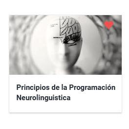 Principios de la Programación Neurolinguistica y el Coaching
