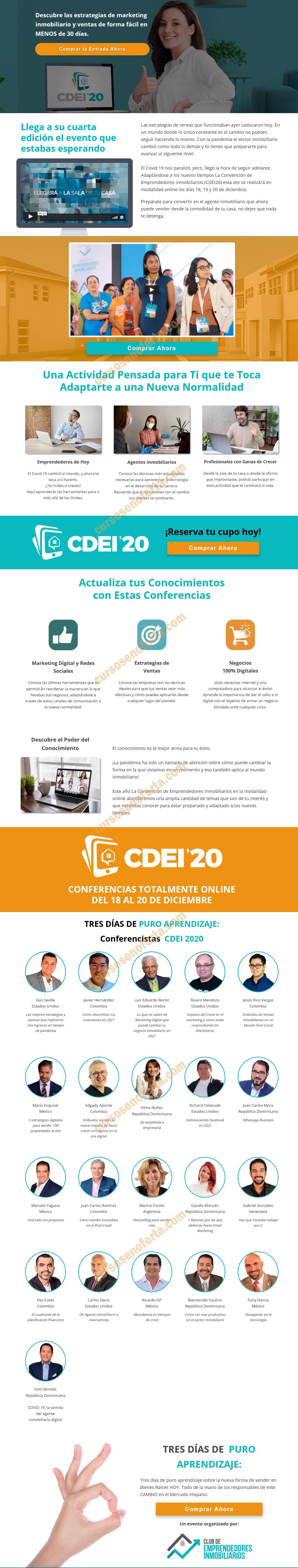 CDEI 2020