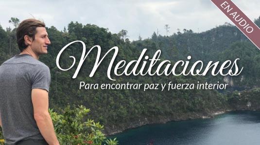 Meditaciones  Ricardo Perret