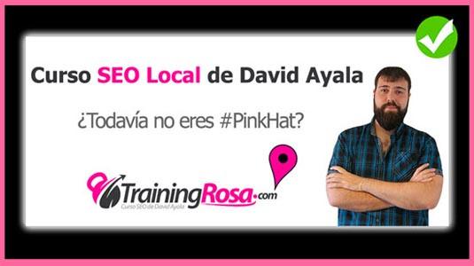 Curso SEO Local  David Ayala